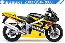 2003 Suzuki GSXR600 accessoires