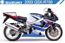 2003 Suzuki GSXR750 accessoires