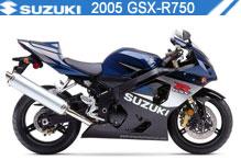 2005 Suzuki GSXR750 accessoires