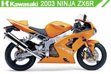 2003 Kawasaki Ninja ZX-6R accessoires