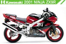 2001 kawasaki Ninja ZX-9R accessoires