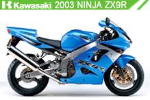 2003 kawasaki Ninja ZX-9R accessoires