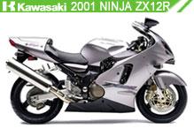 2001 kawasaki Ninja ZX-12R accessoires