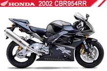 2002 Honda CBR954RR accessoires