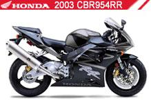 2003 Honda CBR954RR accessoires