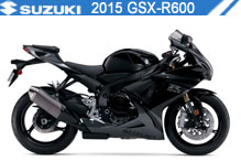 2015 Suzuki GSXR600 accessoires