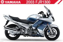 2003 Yamaha FJR1300 accessoires