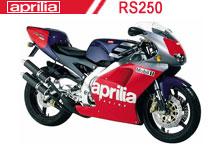 RS250 Carénages