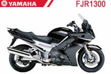 FJR1300 Carénages